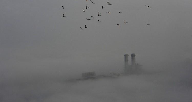 Sekelompok burung terbang di atas kota Wuhan, Hubei, Tiongkok, yang diselimuti polusi, Senin (16/1). ANTARA FOTO/REUTERS/Stringer.