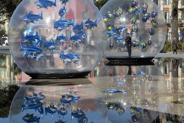 A man installs fish-shaped balloons in a water fountain to mark April Fools' Day in Nice