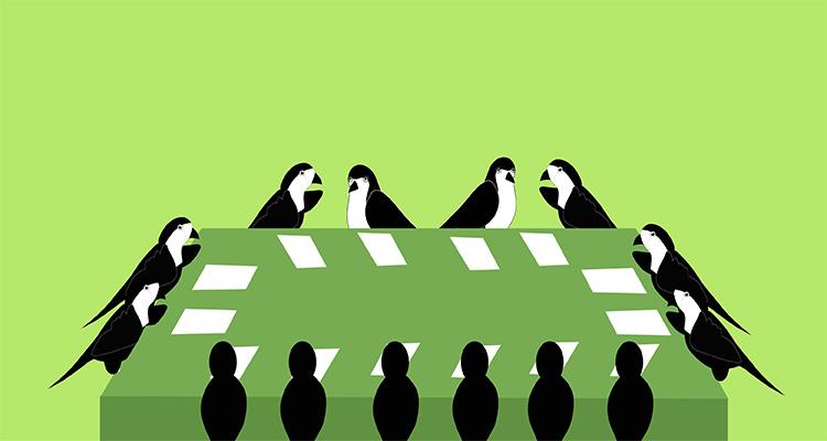 Organisasi Sparrow