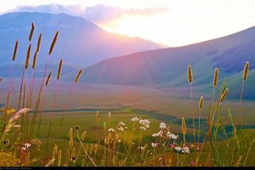 Flickr - Moyan Brenn - valley of Castelluccio di Norcia at sunrise
