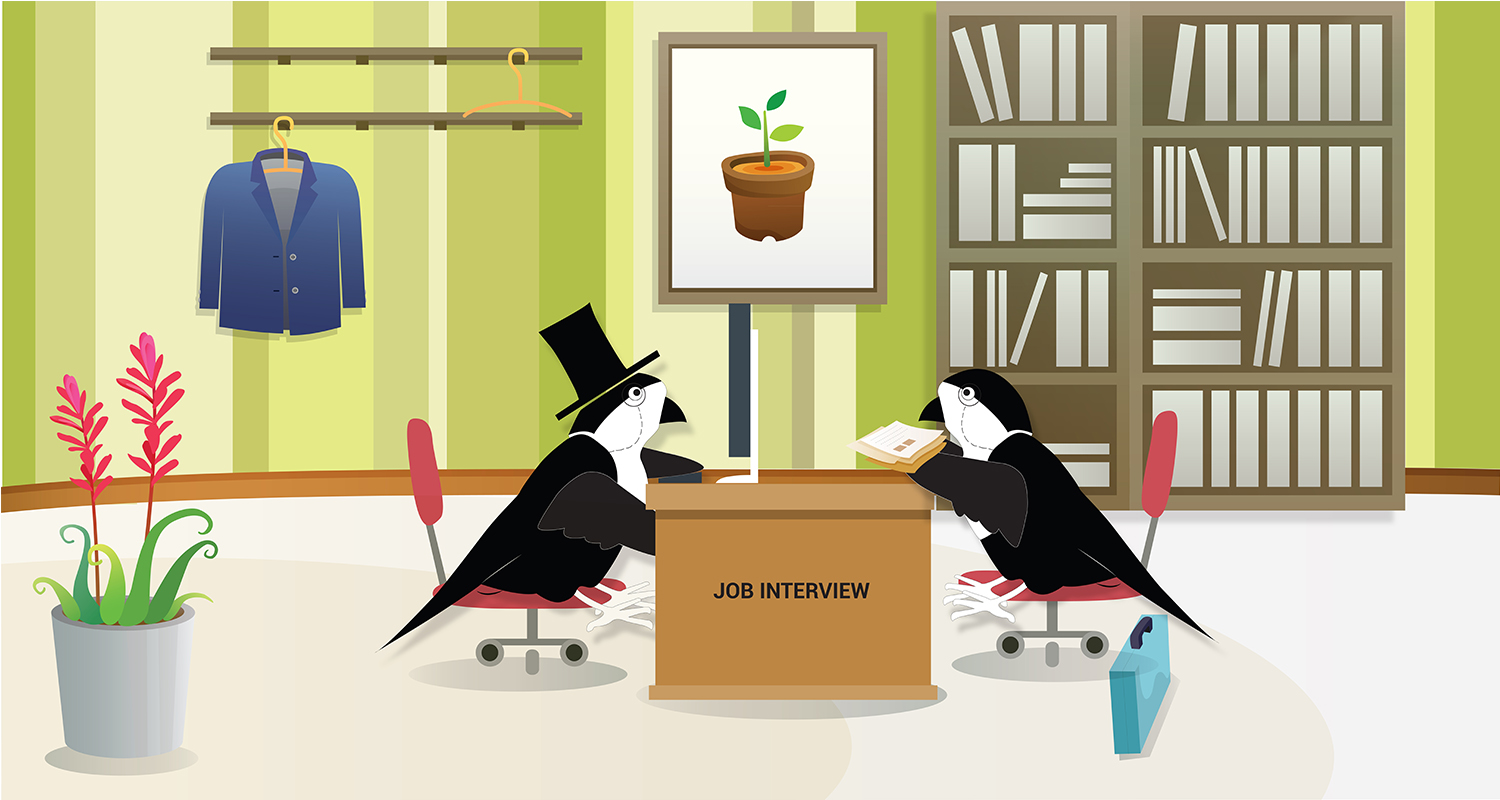 Sparrow Job Interview