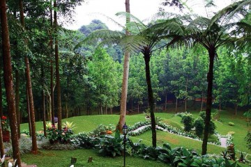 The Michael Resorts Indonesia