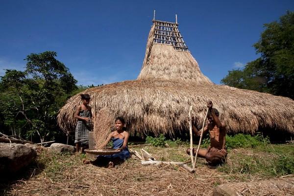 Desa Ubuweri