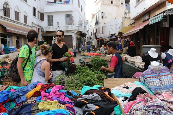 Casablanca_Activities1