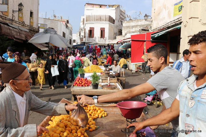 Casablanca_Activities2