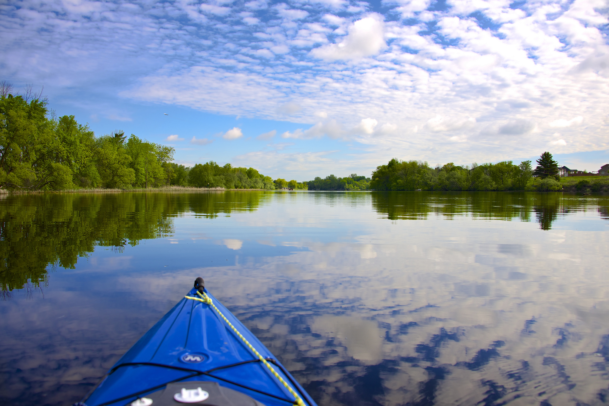 On the Rideau River at the Chapman Mills Conservation Area - south of Ottawa.