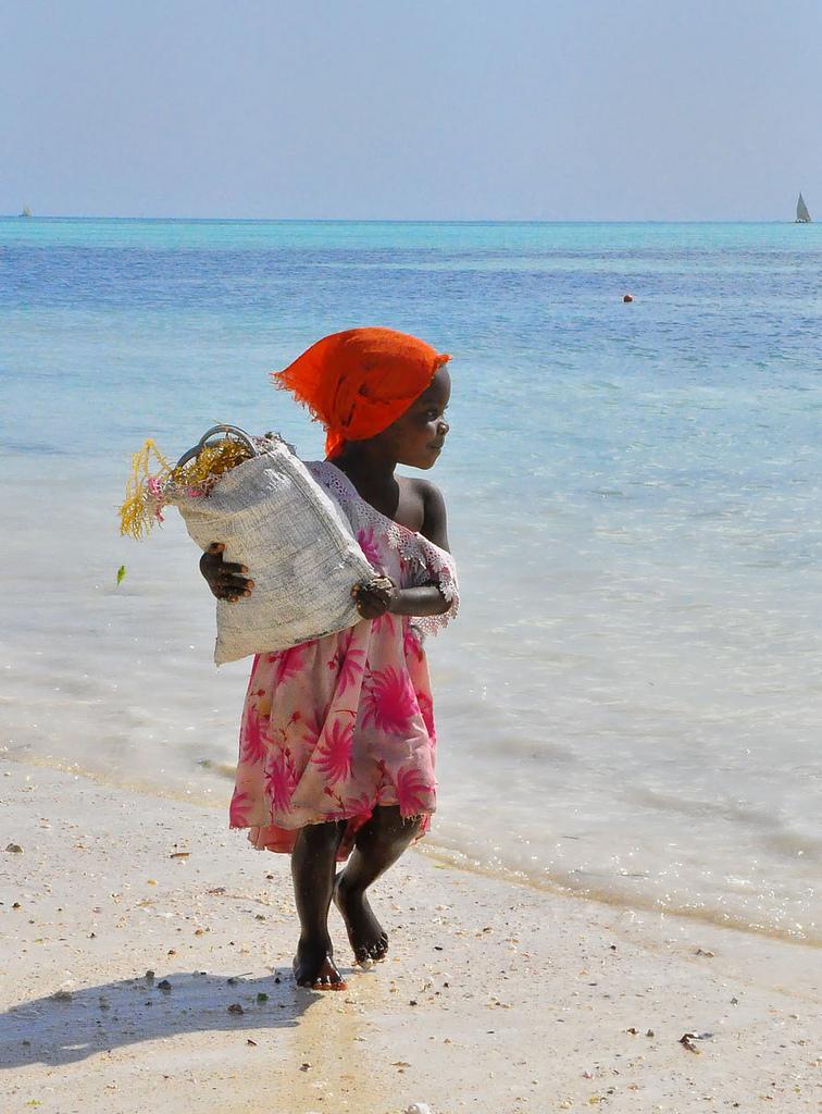 Flickr - Seaweed Collector, Zanzibar - Rod Waddington