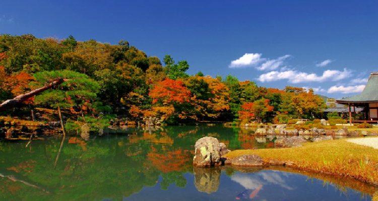 Kyoto - Kalvin Biswan