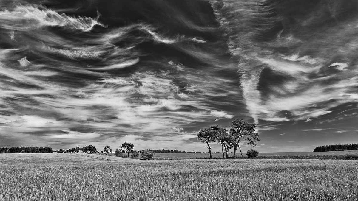 Fleeting Clouds Over West Wratting