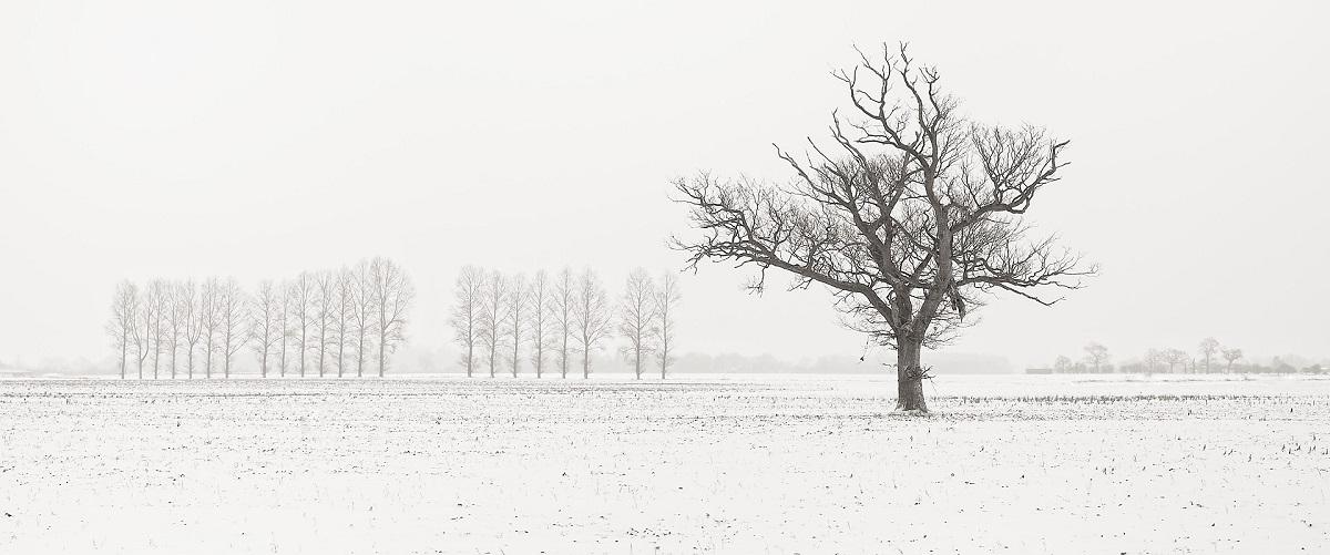Flickr - Snowy Rougham Airfield View - Andrew Stawarz