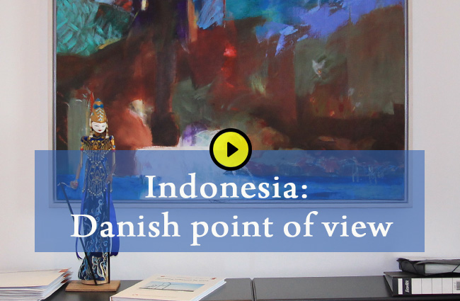 Danish Point of View